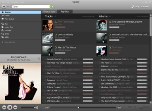 Spotify free download Interface