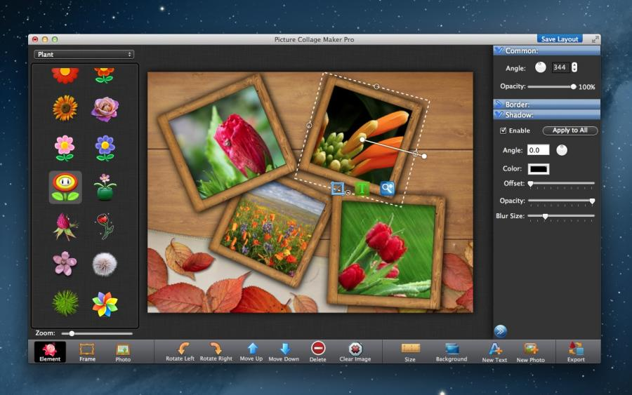 Picture Collage Maker Pro Download