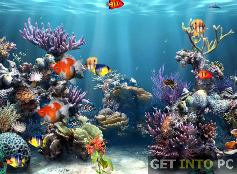 Aquarium 3D Screensaver Download For Free
