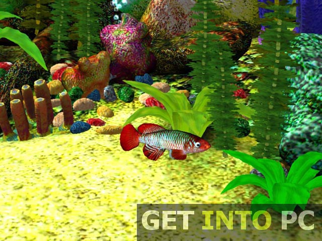 Aquarium 3D Screensaver Setup Free Download