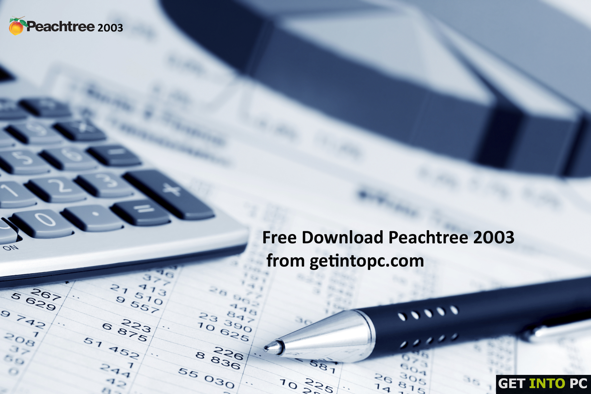 Peachtree 2003 Free Download