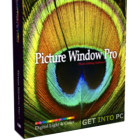 Digital Light and Color Picture Window Pro Free