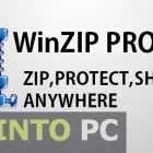 WinZip PRO FINAL Free Download