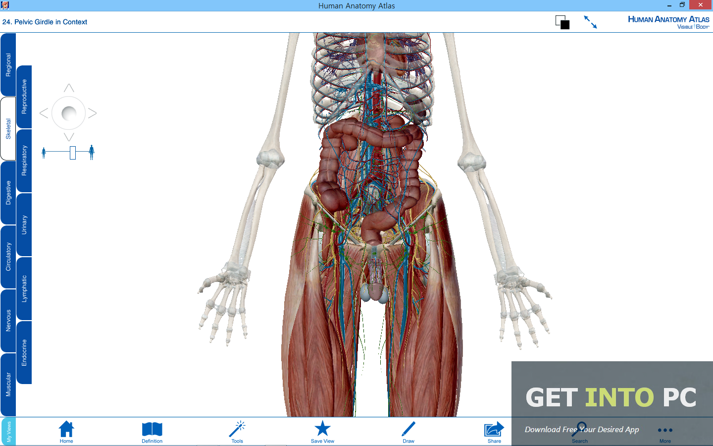 Visible Body Human Anatomy Atlas Offline Installer