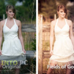 LIGHTROOM PRESETS Free Download