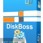 DiskBoss Ultimate Free Download