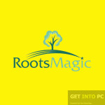RootsMagic Free Download