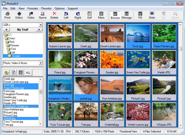 PhotoELF Photo Editor Offline Installer Download