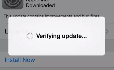 verifying update