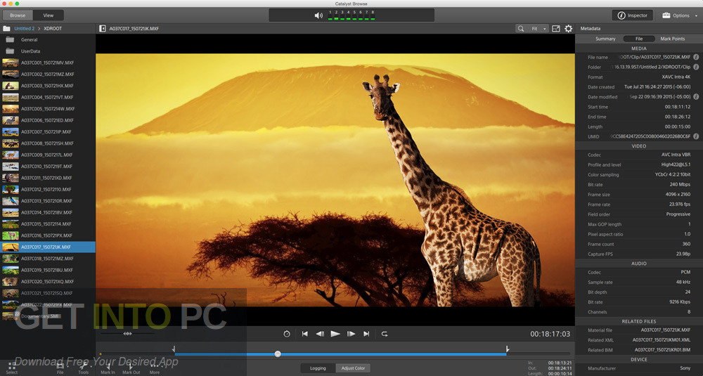 Sony Catalyst Browse Suite 2017 Direct Link Download-GetintoPC.com