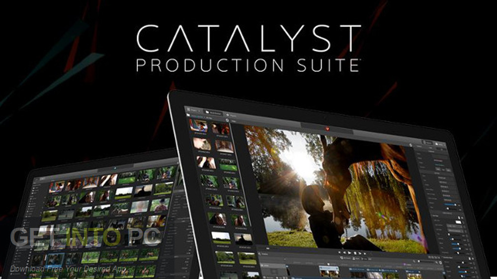 Sony Catalyst Production Suite 2019 Free Download