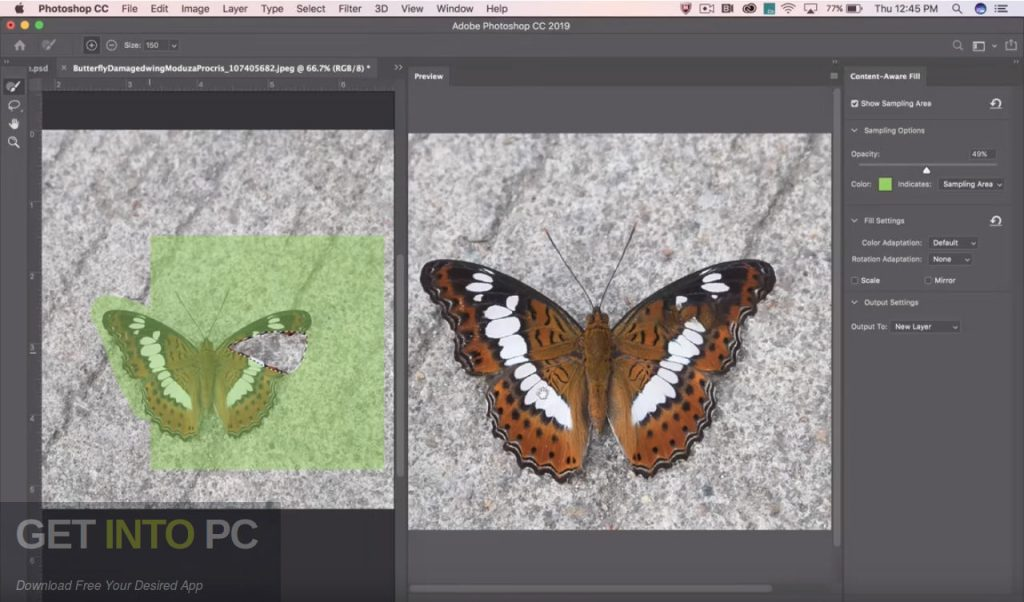 Adobe Photoshop CC 2019 Direct Link Download-GetintoPC.com