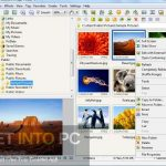 FastStone Image Viewer 6.6 Corporate Free Download
