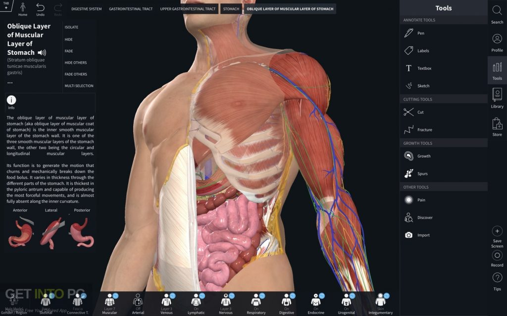 Complete Anatomy 2019 for Mac Direct Link Download-GetintoPC.com