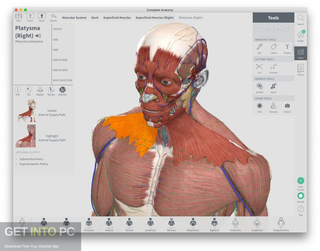 Complete Anatomy 2018 for Mac Direct Link Download-GetintoPC.com