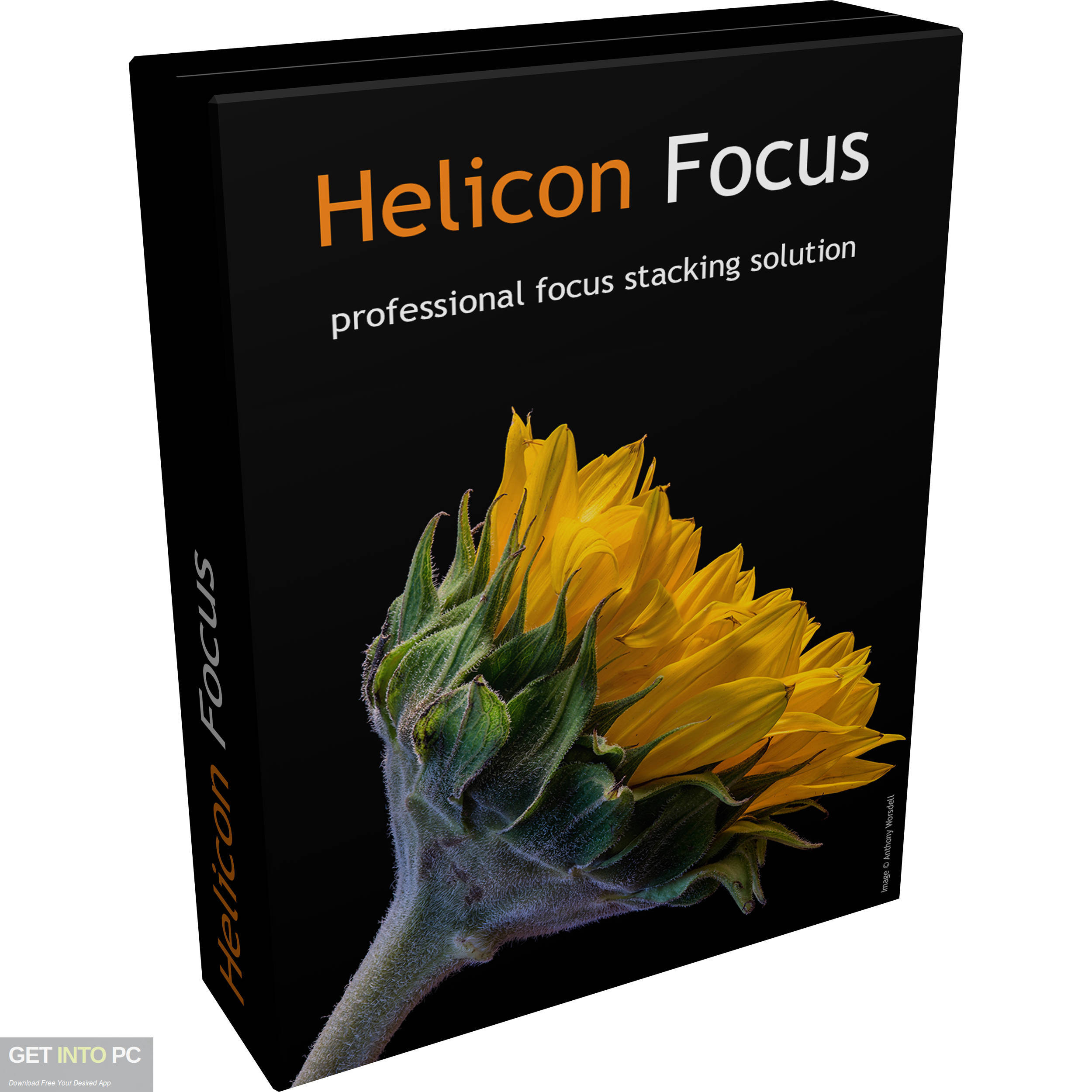 Helicon Focus Pro Free Download-GetintoPC.com