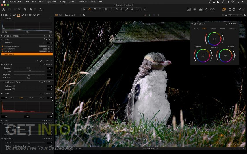 Capture One Pro 2020 Direct Link Download