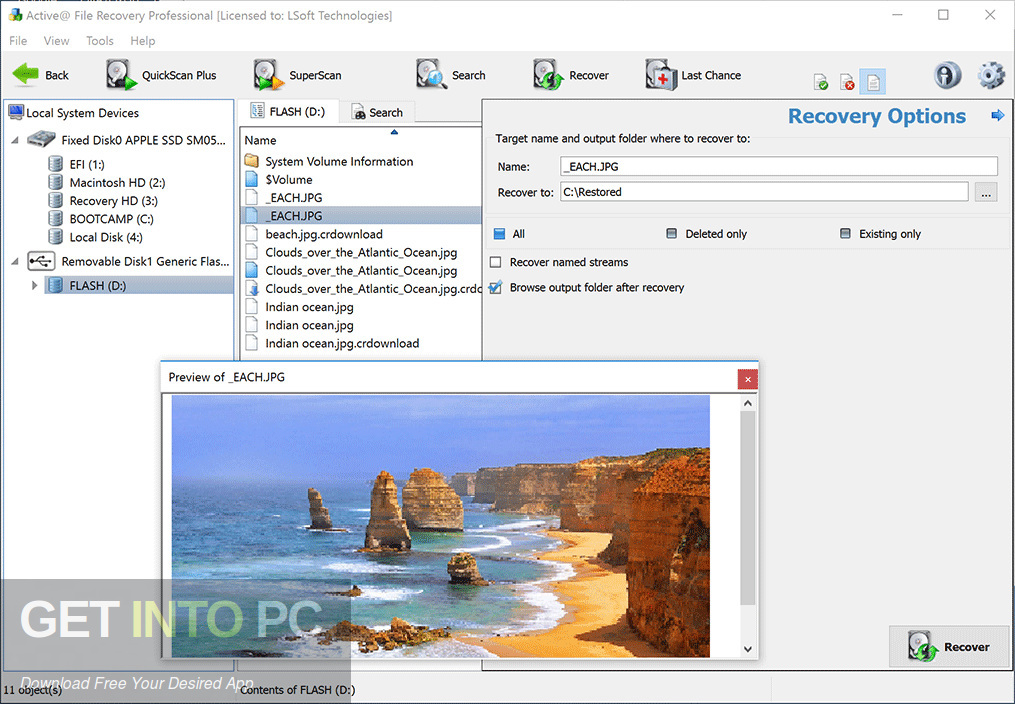 Active File Recovery 2019 Free Download-GetintoPC.com