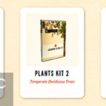 Download Laubwerk Plants Kit 1 & 2 & 3 for Cinema 4D / 3dsMax