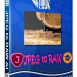 Topaz JPEG to RAW AI 2019 Free Download