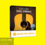 Evolution Steel Strings (KONTAKT) Free Download