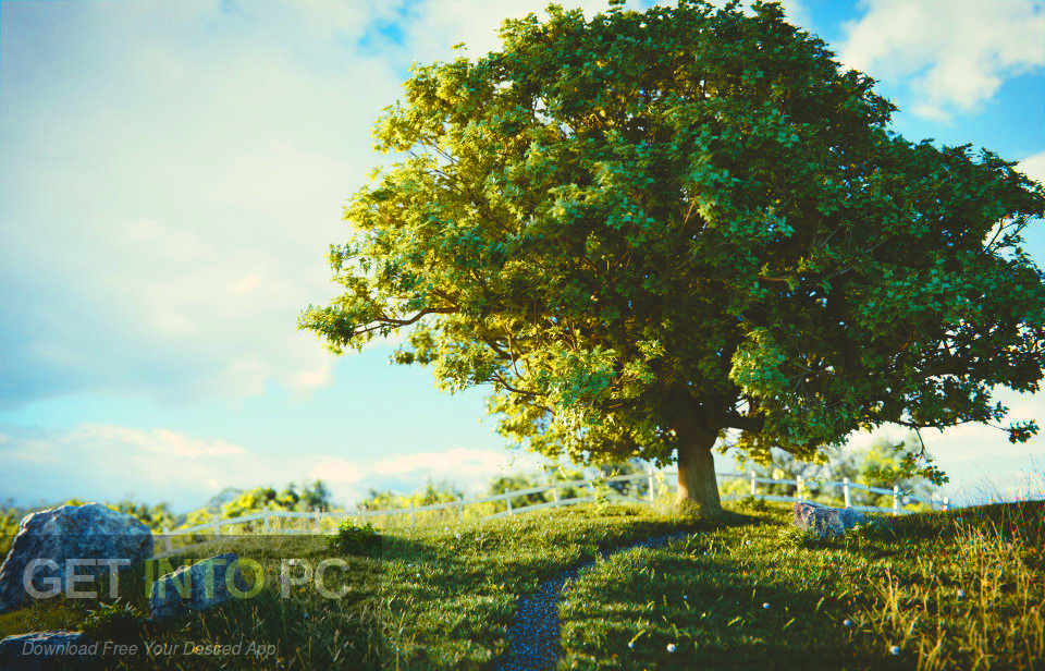 Download the grove 3d for blender 2 8 - Tree images free download ...