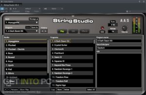Applied Acoustics Systems String Studio VS-2 VST Offline Installer Download-GetintoPC.com