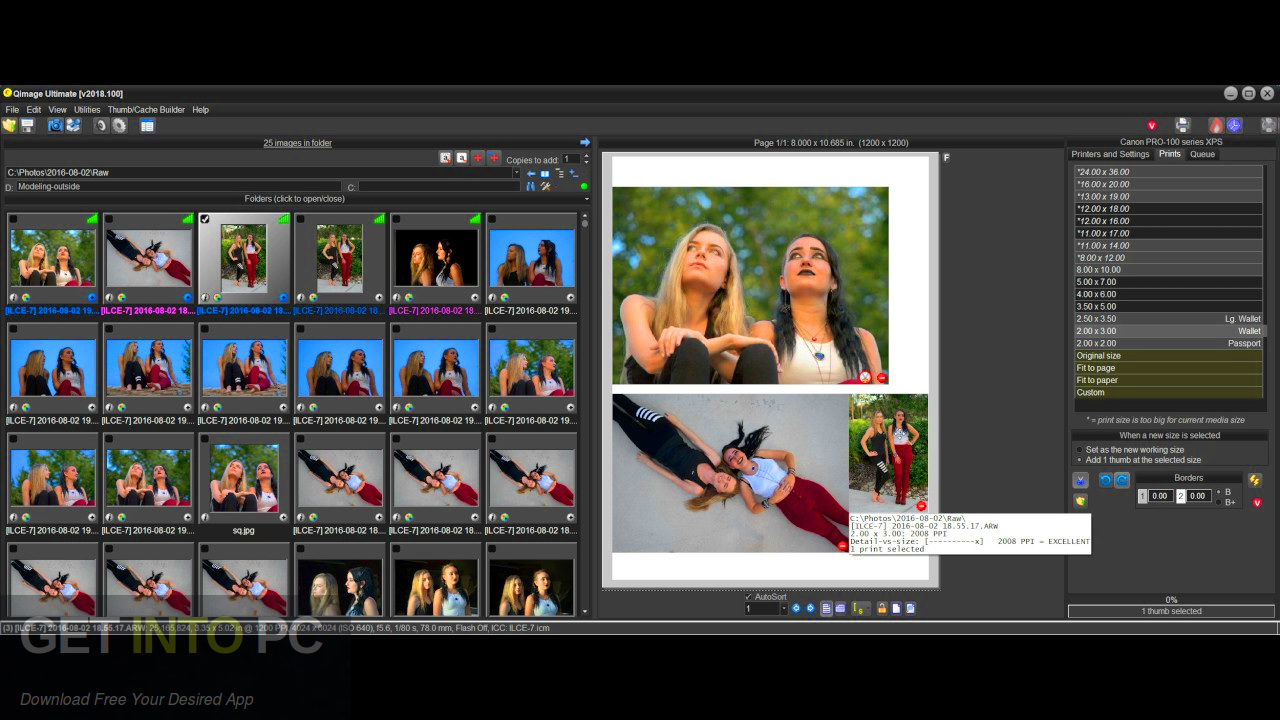 Qimage Ultimate 2019 Latest Version Download-GetintoPC.com