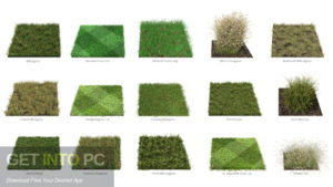 The Grass Essentials Addon for Blender Direct Link Download-GetintoPC.com
