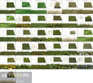The Grass Essentials Addon for Blender Offline Installer Download-GetintoPC.com