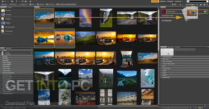 Adobe Bridge CC 2020 Free Download-GetintoPC.com