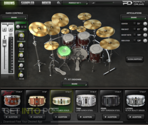 Naughty Seal Audio Perfect Drums Free Download-GetintoPC.com