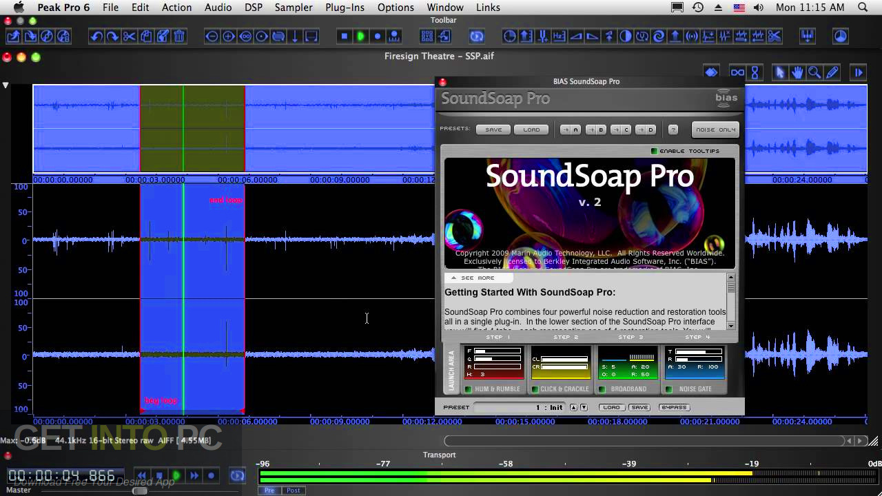 BIAS - SoundSoap PRO VST Latest Version Download-GetintoPC.com
