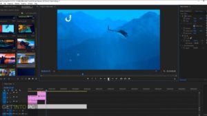 VideoHive - Video Library For Premiere Pro Free Download-GetintoPC.com