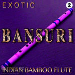 Zion Music Exotic Bansuri Vol 2 Samples Download