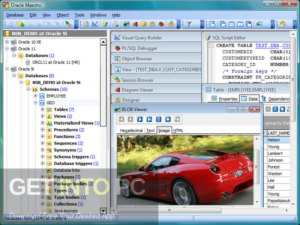 Oracle Maestro Professional Direct Link Download-GetintoPC.com