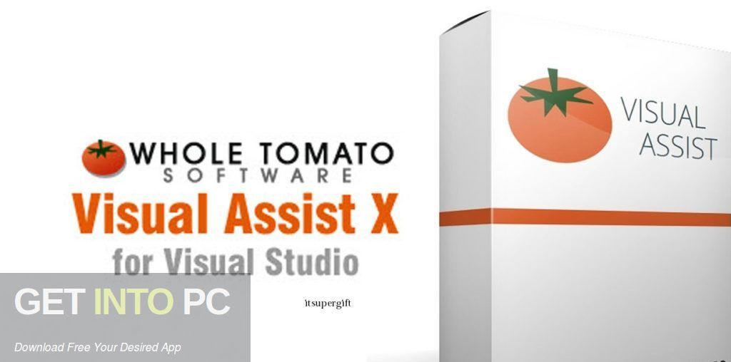 Visual Assist X 2020 Free Download