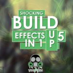Vandalism Shocking Build Up Effects Vol.5 Free Download