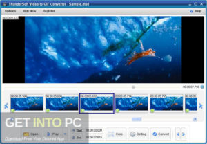 ThunderSoft GIF to Video Converter 2020 Free Download-GetintoPC.com