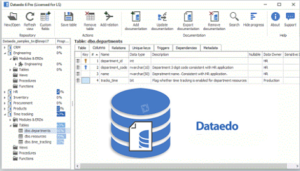 Dataedo-2020-Latest-Version-Free-Download
