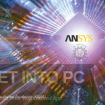 ANSYS CMA 2019 Free Download