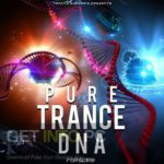 Trance Euphoria – Pure Trance DNA For Spire Free Download