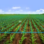 Lincoln Agritech IRRICAD Free Download