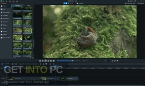 ACDSee-Luxea-Video-Editor-2021-Direct-Link-Free-Download-GetintoPC.com_.jpg